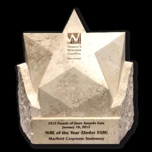 wbe-oty-2012-award